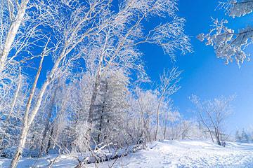 winter glacier snow scenery