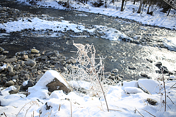 winter outdoor river with white snow