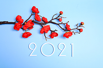 bouquet of white 2021 and red plum blossoms on blue background