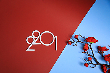 red and blue contrast background white 2021 and red plum bouquet new year wallpaper