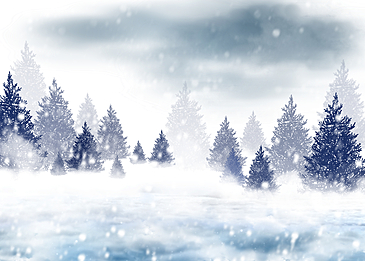 blue sky winter forest snow background