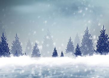 cold winter day snow winter forest snow background