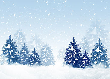 cold winter forest snow background