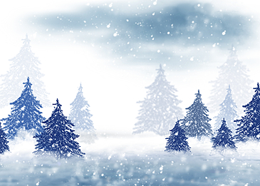 snow sky winter forest snow background