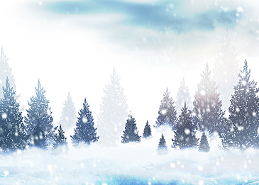 snowflake pine tree winter forest snow background
