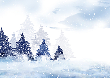 white snow covered winter forest snow background