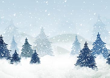 winter forest snow background blue snow scene pine trees