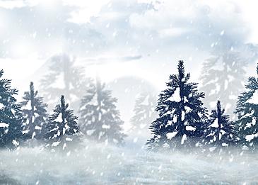 winter forest snow background heavy snow snow scene