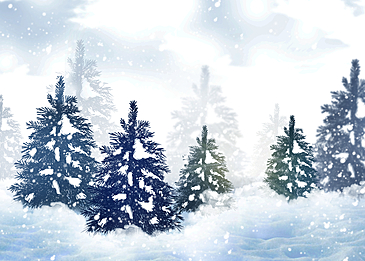 winter forest snow background snow pine trees
