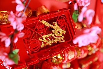 spring festival element background