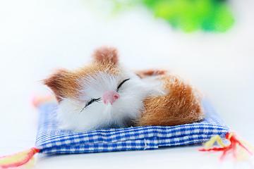 cute simple cat background map