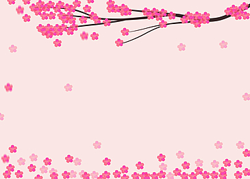 peach blossom petals flowers dancing pink background