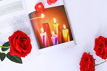 red rose flower with book background
