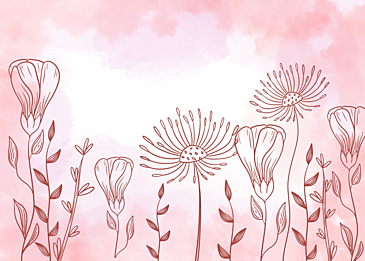 pink watercolor line flower background