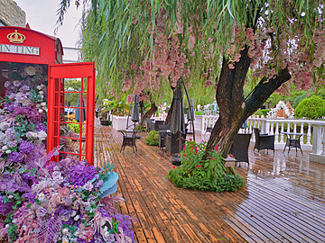 flowered trees and phone booths