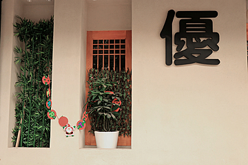 house with solid exterior walls and bamboo potted plants