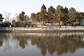 reflection of trees and river in zhongxinjing park