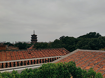 looking over the roof to see the pagoda of kaiyuan temple