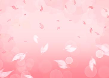 pink spring petals falling background