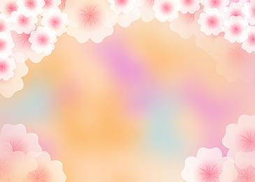 petals sakura flower background colorful background