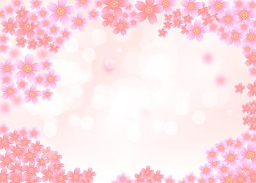 pink cherry blossom spring background