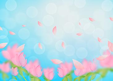 spring pink petals falling background