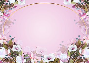 beautiful white flowers pink floral background illustration