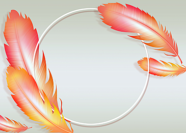 colorful beautiful feather background painting