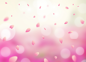 pink petals spring light and shadow background