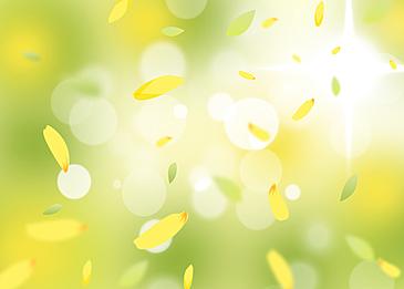 yellow green winter jasmine petals flying around spring background