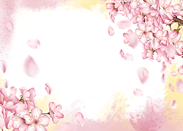 cherry blossom background yellow pink watercolor blooming