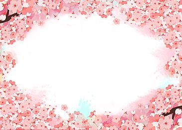 pink beautiful cherry blossom background