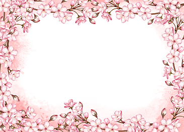 pink cherry blossom watercolor background