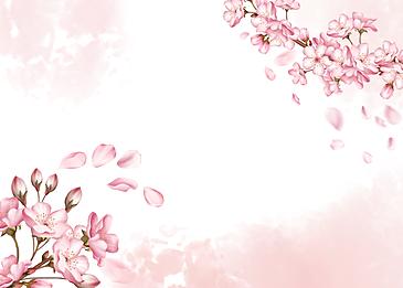 cherry blossom petals dancing background