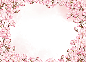 cherry blossom watercolor blooming background