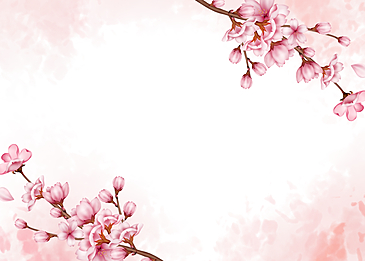 cherry tree blooming background