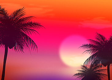 sky trees sunset summer abstract silhouette