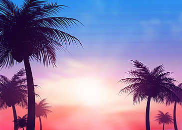summer abstract silhouette of coconut tree under blue sky