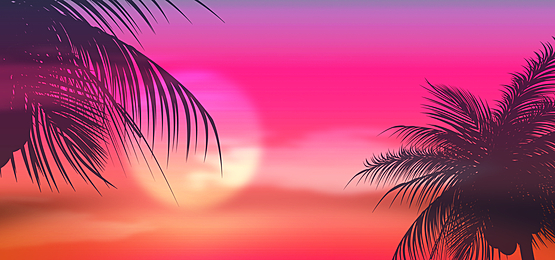 sunset beautiful summer abstract silhouette