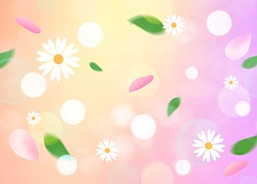 floating petals spring dream background