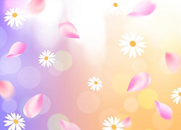 spring flower decoration light background