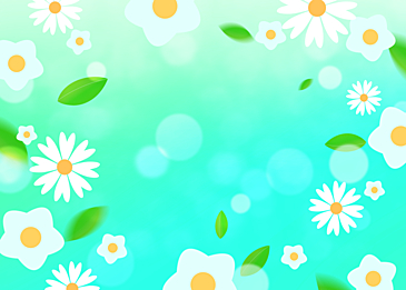 spring flowers blue green background