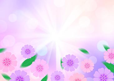 spring flowers purple background