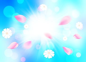 spring petals blue background