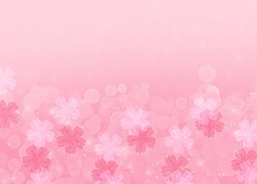 pink sakura petals background