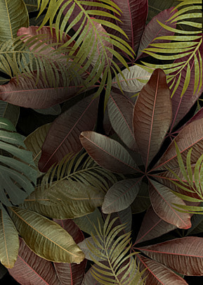 creative background of withered and yellow leaves of palm plants