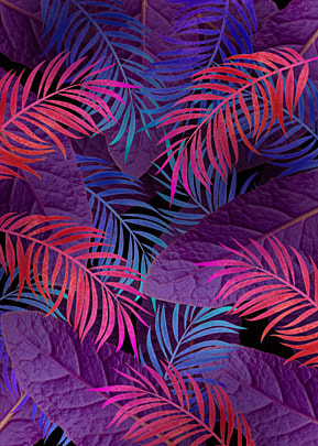 tropical plant leaves palm leaves purplish red creative background