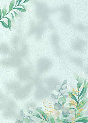 flower shadow abstract leaf plant background
