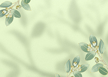 flower shadow abstract pattern decorative background