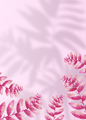 flower shadow bright red petals decorate the background